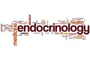 endocrinology 300x200 - Эндокринология