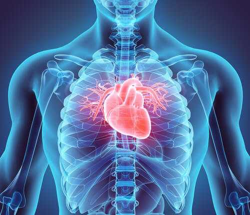 treatment of heart defects - Методы